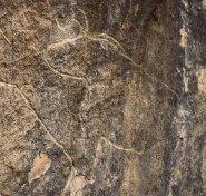 Rock engravings