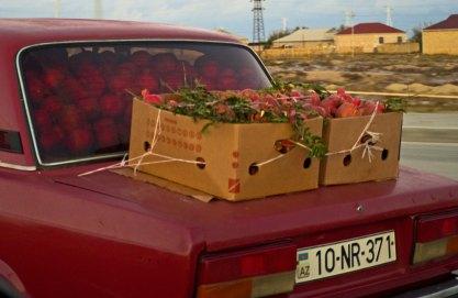 Lada full of pomegranates