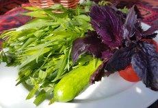 Garnish of a full herb garden (sabzi)